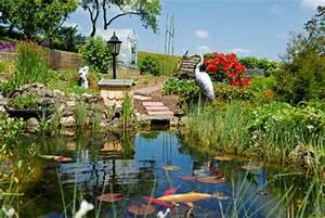 Mein Schöner Garten De : der gartenteich tipps und tricks von mein sch ner garten ~ Lizthompson.info Haus und Dekorationen