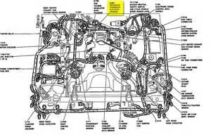 1995 Mercury Marquis Coolant Diagram 26095 Netsonda Es