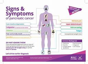 Research Solves Pancreatic Cancer Mystery  U2013 The