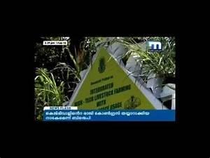 Innovative Farming method in Kerala