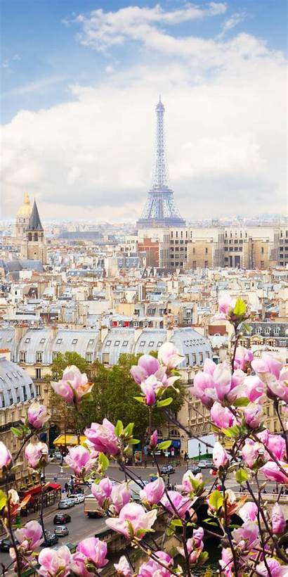Paris Europe France Iphone Backgrounds Wallpapers Flowers