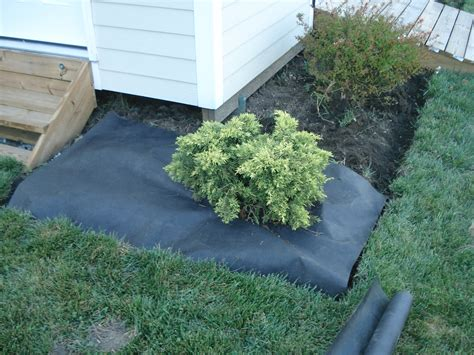 when to mulch flower beds in our home from scratch