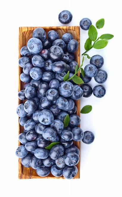Blueberries Background Format