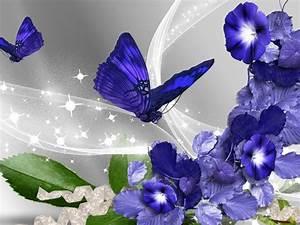 flores, mariposas imágenes, fondos de pantalla, fondos ...