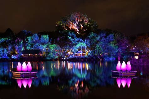 rivers of light look animal kingdom s rivers of light in 360