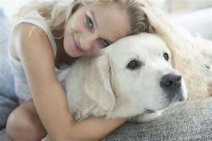 Dogs have human-like sense of morality, research shows ...