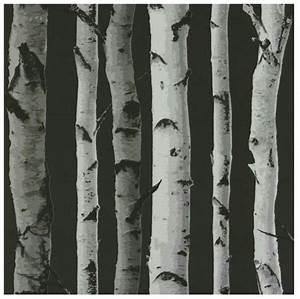 Papier Peint Arbre Noir Et Blanc : best 25 papier peint bouleau ideas on pinterest peinture murale d 39 arbre de bouleau mur ~ Nature-et-papiers.com Idées de Décoration