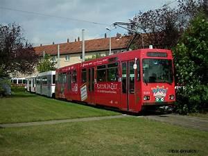 Hamburg Braunschweig Bus : bilder von bus bahn sommerferien 2008 bilder aus ganz niedersachsen ~ Markanthonyermac.com Haus und Dekorationen