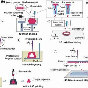 (PDF) Biofabrication in Tissue Engineering