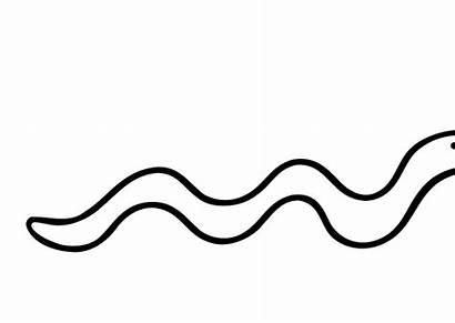 Snake Clipart Line Eve Colouring Clipartpanda Adam