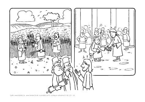 lesejahr   sonntag im jahreskreis erzbistum koeln