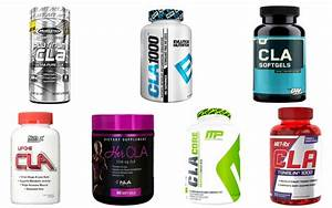Which Is The Best Cla Supplement On The Market