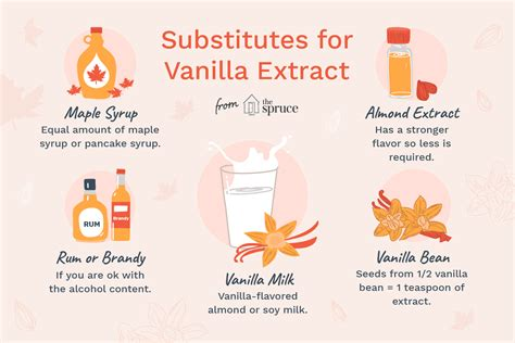 cheap  easy vanilla extract substitutes