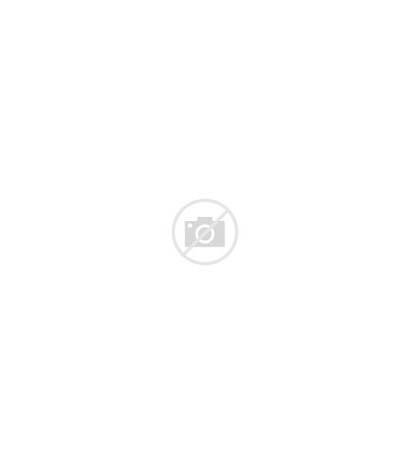 Tattoos Tattoo Animal Transform