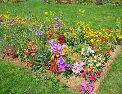 Flores útiles En El Huerto Para Alejar Plagas O Atraer