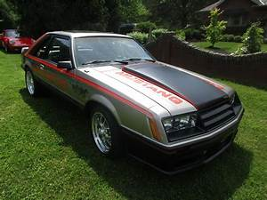 1979 Ford Mustang for Sale | ClassicCars.com | CC-1216924