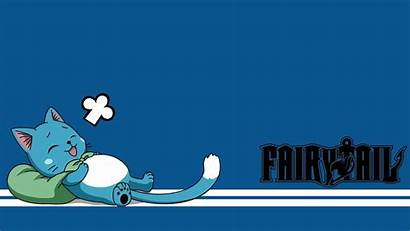 Fairy Happy Tail Wallpapers Anime Cat