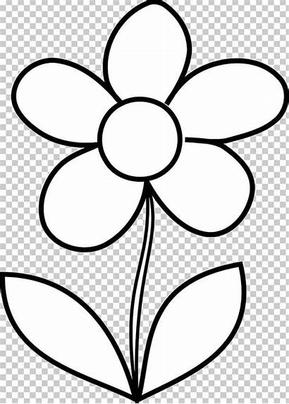 Flower Bouquet Coloring Adult Clipart Imgbin