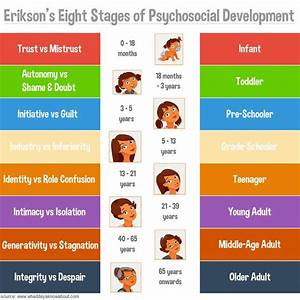 Drive Age Chart Poster Erikson 39 S Stages Of Psychosocial Development