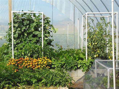 Garden Modules by Abundance Garden Course The Living Farm