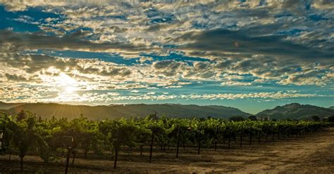 Valley Weather by Weather In Napa Valley Average Temperatures Rainfall