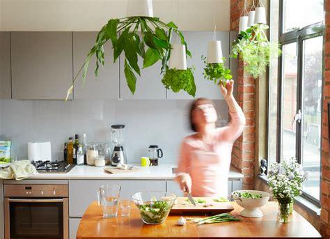 jardiniere cuisine 1001 idées jardinière d 39 intérieur cultivez votre