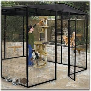 House Outdoor Cat Enclosures
