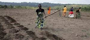 'Job Creation Around Agriculture Can Spur Youth Employment ...