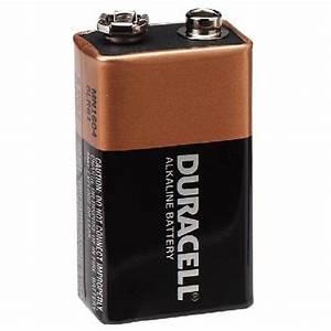 Batterie Tech 9 : shop high tech pet 9 volt alkaline battery at ~ Medecine-chirurgie-esthetiques.com Avis de Voitures