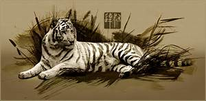 Chinese Tiger by near43 on DeviantArt