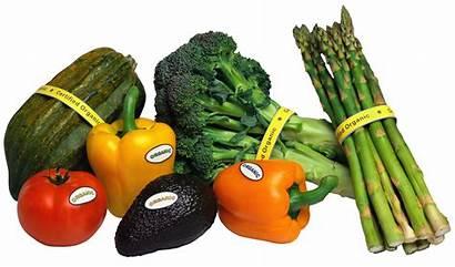 Vegetables Organic Clipart Transparent Vegetable Veggies Yopriceville