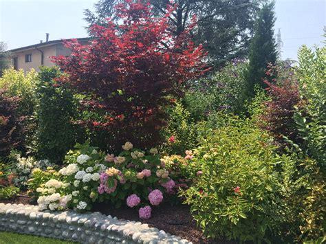 giardini e fiori giardini con prato sintetico e fiori studio green