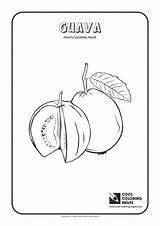 Coloring Guava Pages Fruits Cool Tamarillo sketch template
