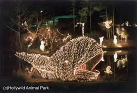 greenville celebrate the holidays at hollywild with the