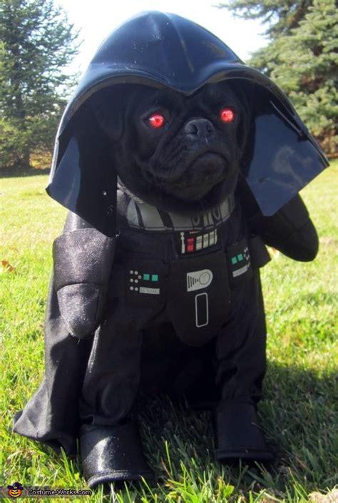 darth vader costume  dogs
