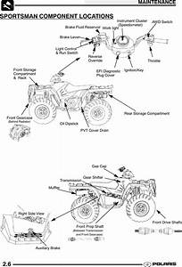 2005 Polaris Sportsman 700 Parts Manual