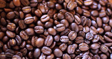 light roast more caffeine does darker coffee more caffeine tasting table