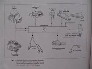 Thesamba Com    Vanagon - View Topic