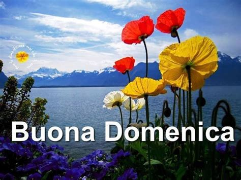 high plant stand 118 best images about buona domenica on floral