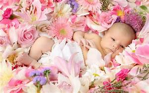 Desktop child, baby, flowers | HD Desktop Wallpapers