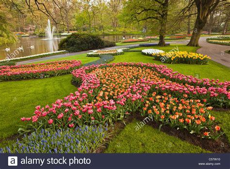 eleletsitz tulip garden images awesome holland flower garden 17 best ideas about tulip garden chsbahrain com