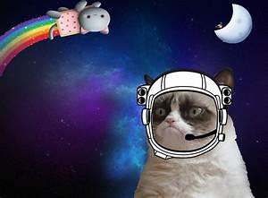 Space Cat Quotes. QuotesGram