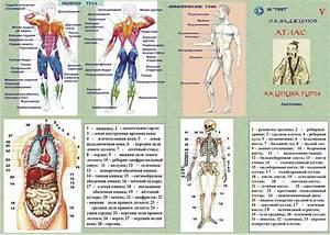 Аденома простатиты у мужчин симптомы лечение в домашних условиях