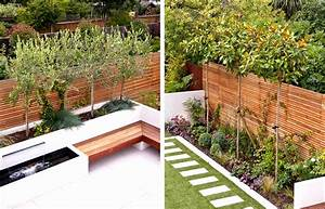 The, Best, Narrow, Garden, Ideas, On, Small, Long, Design, Spaces, Bed, Gardens, Walk, Tall, Evergreen, Trees