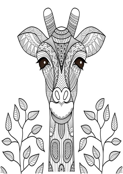mindfulness coloring page giraffe giraffe coloring pages