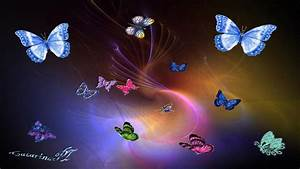 Colorful Butterfly Hd 38 Desktop Background ...