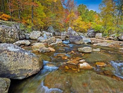 Arkansas Creek Early Morning Ozarks Richland Fall