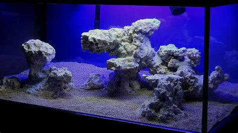 reef aquascaping ideas minimalist aquascaping page 76 reef central