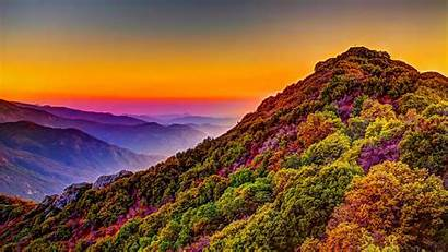 4k Nature Colorful Mountain Sunset Forest Scenery