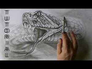 RATTLE SNAKE drawing in graphite pencil easy tutorial ...